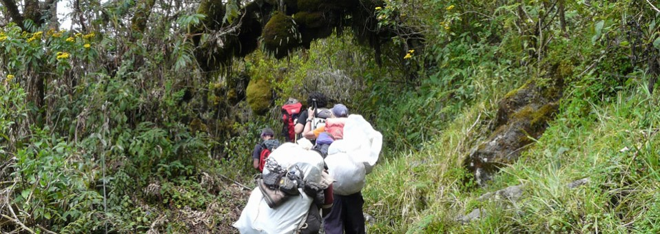 The best period to climb the Rwenzori