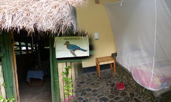 Rwenzori Turaco View Campsite